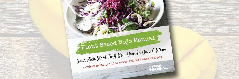 Plan Based Mojo Manual